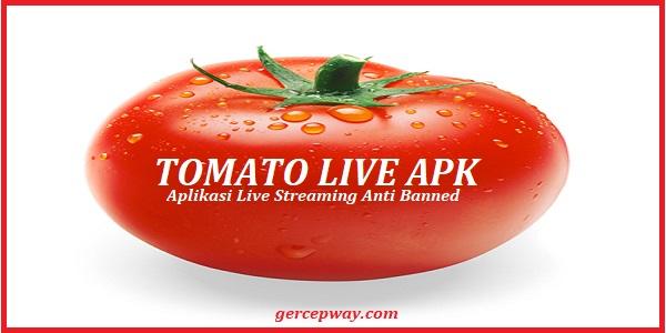 Tomato Live Apk | Nikmati Aplikasi Live Streaming Tanpa Banned