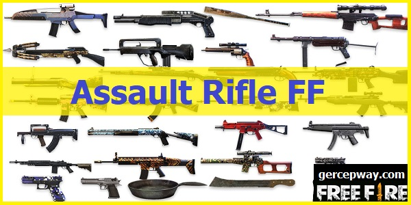Assault Rifle FF