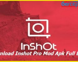 Download Inshot Pro Mod Apk Full Efek