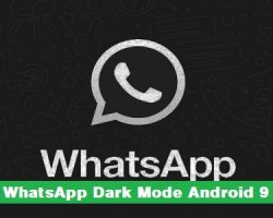 WhatsApp Dark Mode Android 9