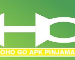 Hoho Go Apk Pinjaman