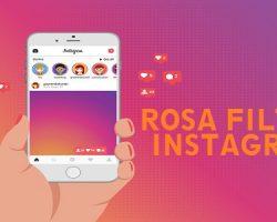 Rosa Filter Instagram