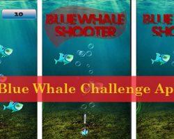 Blue Whale Challenge Apk